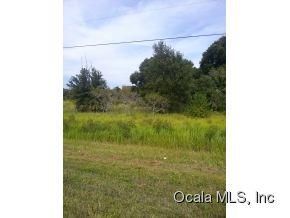Real Estate for Sale, ListingId: 30301454, Summerfield,FL34491