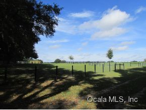Real Estate for Sale, ListingId: 30332084, Dunnellon,FL34432