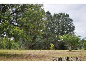 Real Estate for Sale, ListingId: 30400412, Bronson,FL32621