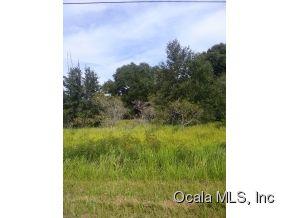 Real Estate for Sale, ListingId: 30455339, Summerfield,FL34491