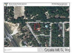 Real Estate for Sale, ListingId: 34686132, Summerfield,FL34491