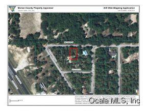 Real Estate for Sale, ListingId: 34686141, Summerfield,FL34491
