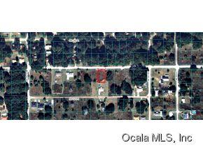 Real Estate for Sale, ListingId: 30966390, Summerfield,FL34491