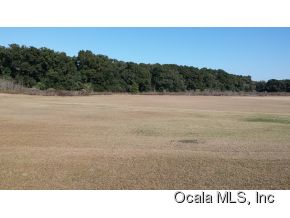 Real Estate for Sale, ListingId: 35031563, Ocala,FL34475