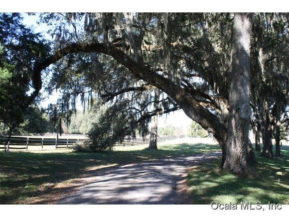 Image of  for Sale near Ocala, Florida, in Marion County: 84 acres