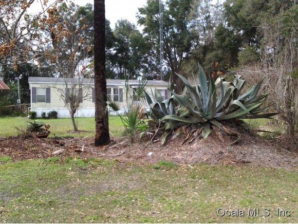 195.3 acres Williston, FL