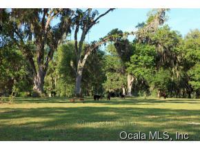300 acres Summerfield, FL