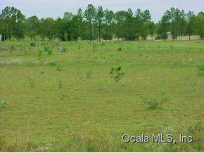 Real Estate for Sale, ListingId: 31356496, Morriston,FL32668
