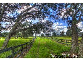 Real Estate for Sale, ListingId: 34787543, Ocala,FL34482