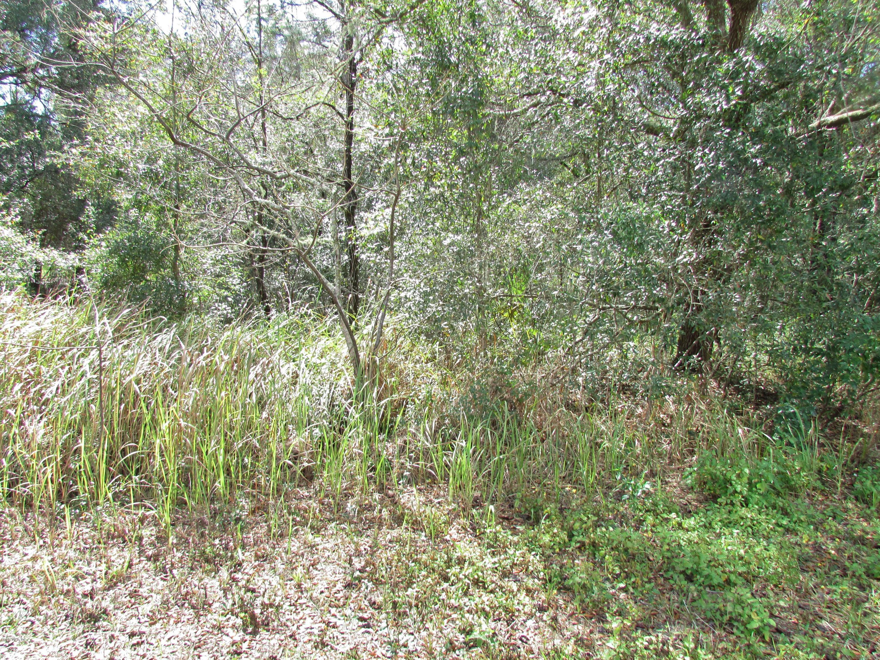 primary photo for 0000 SW 189 Circle, Dunnellon, FL 34432, US