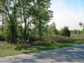 Real Estate for Sale, ListingId: 31539202, Bronson,FL32621