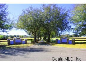 Real Estate for Sale, ListingId: 34787438, Ocala,FL34476