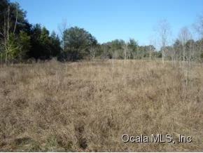 Real Estate for Sale, ListingId: 31696561, Summerfield,FL34491