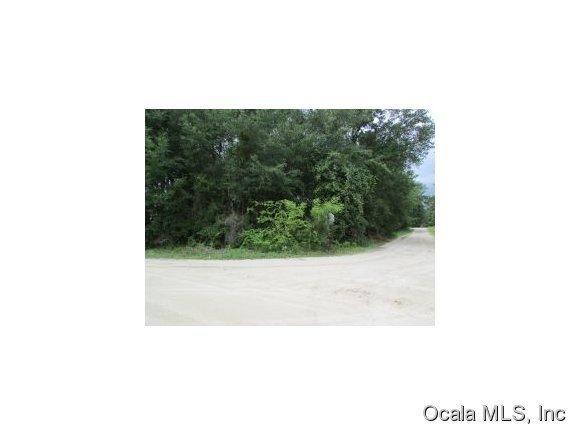 Real Estate for Sale, ListingId: 35940541, Williston,FL32696