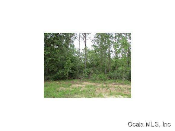 Real Estate for Sale, ListingId: 36676129, Bronson,FL32621
