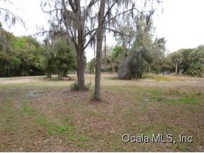 Real Estate for Sale, ListingId: 31865704, Ocklawaha,FL32179