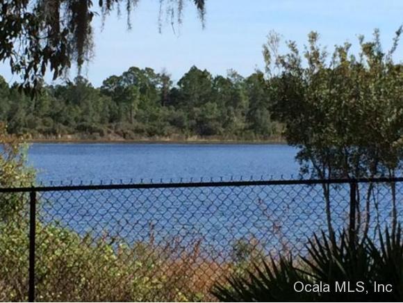 Real Estate for Sale, ListingId: 32154636, Ocklawaha,FL32179
