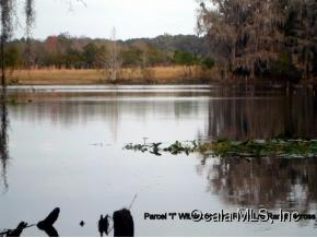 Land for Sale, ListingId:32308396, location: 2261 N Citrus Springs Blvd Dunnellon 34434