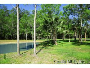 Real Estate for Sale, ListingId: 32534576, Silver Springs,FL34488