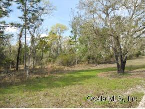 Real Estate for Sale, ListingId: 32697880, Williston,FL32696