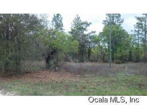 Real Estate for Sale, ListingId: 32871292, Williston,FL32696