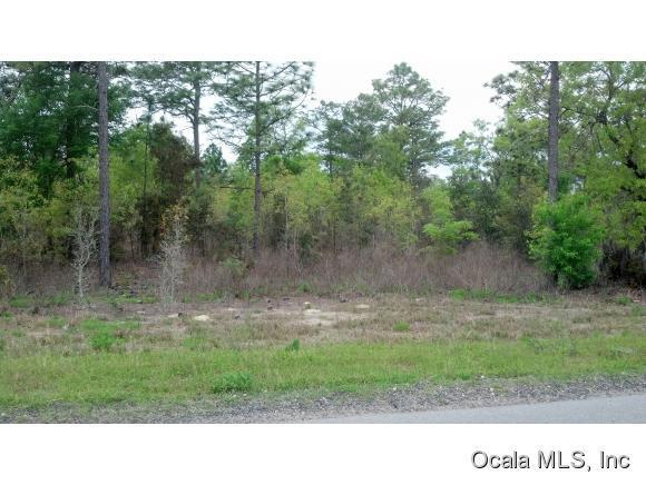 Real Estate for Sale, ListingId: 32871340, Williston,FL32696