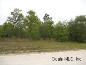 Real Estate for Sale, ListingId: 32928946, Morriston,FL32668