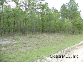 Real Estate for Sale, ListingId: 33073086, Williston,FL32696