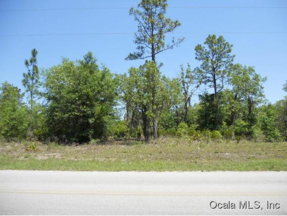Real Estate for Sale, ListingId: 33153209, Bronson,FL32621