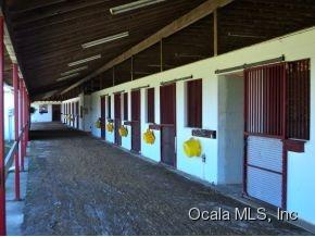 Real Estate for Sale, ListingId: 34869653, Morriston,FL32668