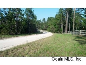 Real Estate for Sale, ListingId: 33445348, Williston,FL32696