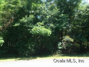 Real Estate for Sale, ListingId: 33676861, Belleview,FL34420