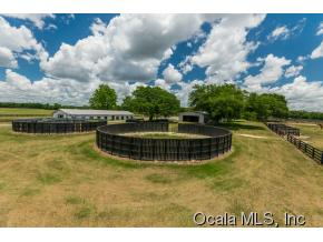 89.51 acres Summerfield, FL