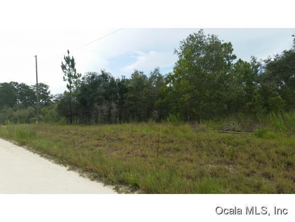 Real Estate for Sale, ListingId: 33857463, Morriston,FL32668