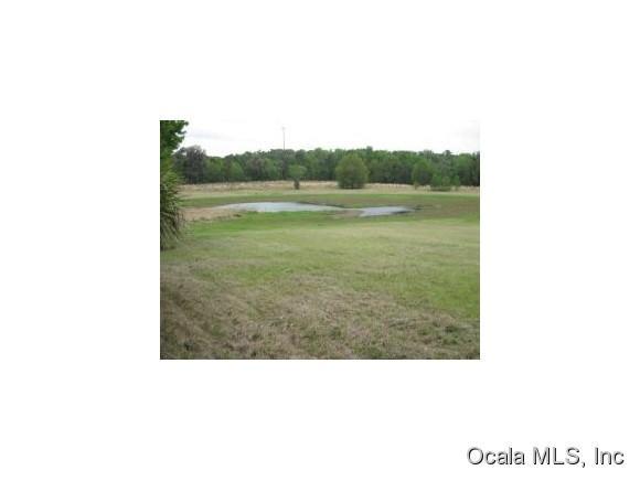 Real Estate for Sale, ListingId: 33871489, McIntosh,FL32664