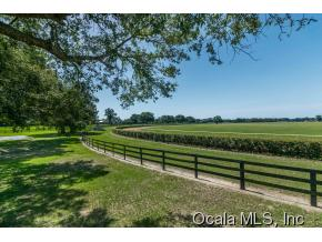 163.67 acres Ocala, FL
