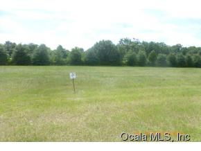 Real Estate for Sale, ListingId: 33998822, Ocala,FL34480