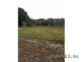Real Estate for Sale, ListingId: 34037882, Summerfield,FL34491