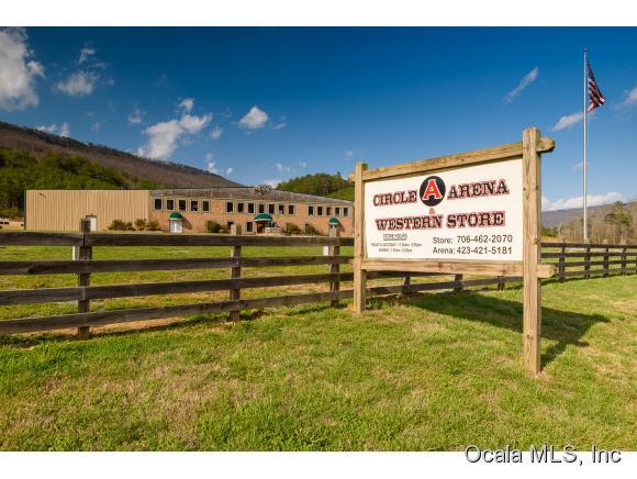 Real Estate for Sale, ListingId: 34686560, Rising Fawn,GA30738