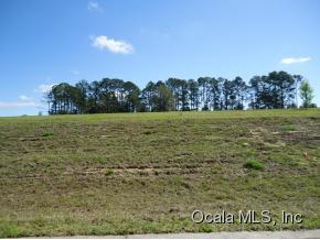 Real Estate for Sale, ListingId: 34813658, Lady Lake,FL32159
