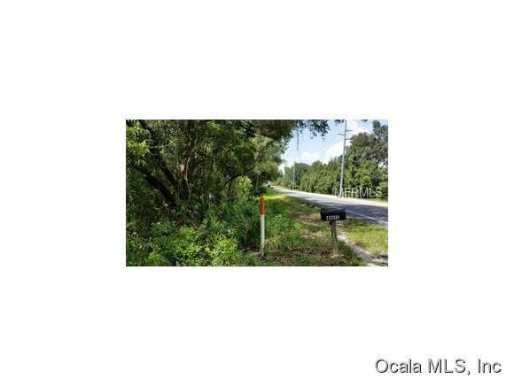 Real Estate for Sale, ListingId: 34263469, Weirsdale,FL32195