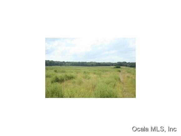 Real Estate for Sale, ListingId:34346908, location: 2700 BLK NW 140 ST Reddick 32686