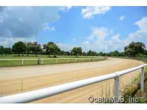 Real Estate for Sale, ListingId: 34555345, Reddick,FL32686