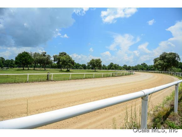 80.85 acres Reddick, FL