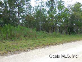 Real Estate for Sale, ListingId: 34839209, Williston,FL32696