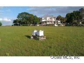 Real Estate for Sale, ListingId: 35010980, Weirsdale,FL32195