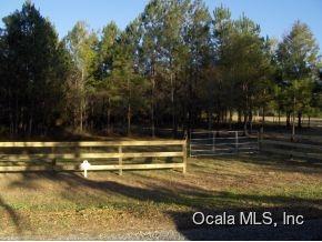 Real Estate for Sale, ListingId: 34987954, Williston,FL32696