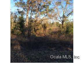 Real Estate for Sale, ListingId: 35010918, Ocala,FL34472