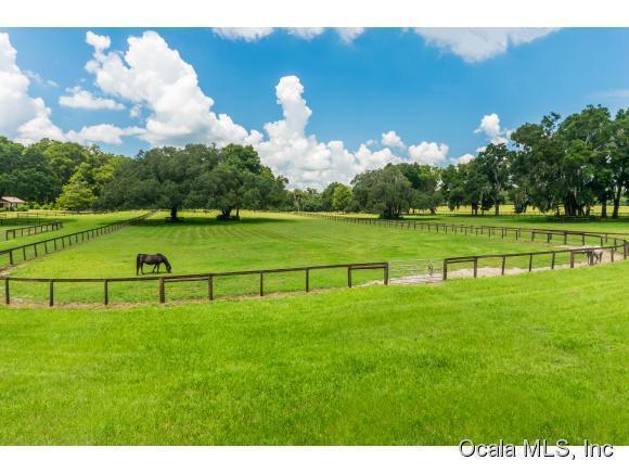 57 acres Reddick, FL