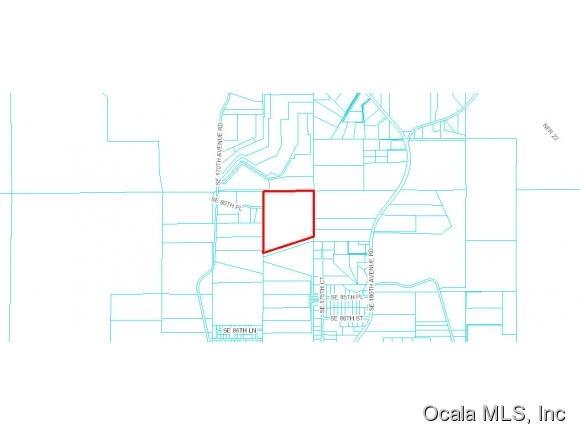Real Estate for Sale, ListingId: 35191373, Ocklawaha,FL32179